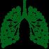 lungs-logo-1240x1204